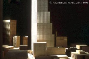 SOM : scale model of Atlanta