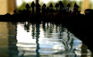 Lake with Palms