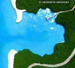 Mangroves on Bay
