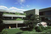 ArchiOfficeCourtyard